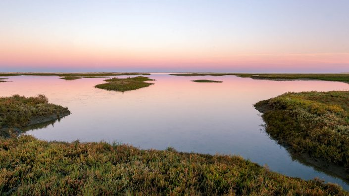 Wetlands close to Faro in Portugal
